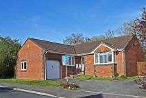 Detached Bungalow for sale in Heron Road, Honiton