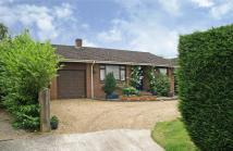 Detached Bungalow in Dorking Road, Chilworth...