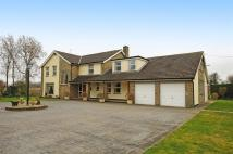 5 bedroom Detached home to rent in Stillington Road...