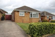 2 bed Detached Bungalow to rent in Clifton Rise, Maltby...