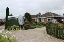 Detached Bungalow for sale in Clifton Rise, Maltby...