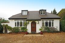 3 bedroom Detached Bungalow in Totteridge, N20