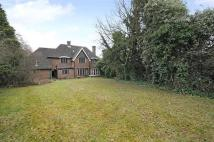 Detached house to rent in BARNET, HADLEY WOOD