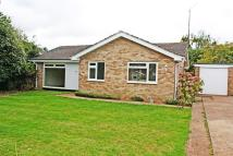 3 bed Detached Bungalow in Winslade Park...