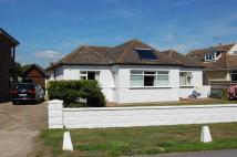 Detached Bungalow to rent in Ferring Worthing