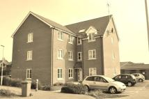 Flat for sale in Jennings Drift, Kesgrave...