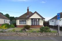 2 bedroom Detached Bungalow in Mill Lane, Felixstowe...