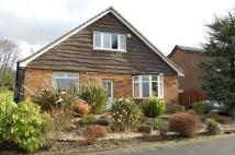 Detached Bungalow for sale in Lower Hill Drive...