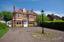 Detached home for sale in Chichester, West Sussex
