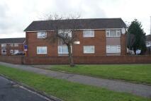 Ellesmere Apartment to rent