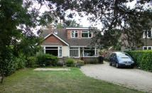 Detached Bungalow for sale in Ifield Road, West Green...