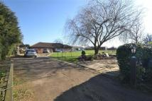 Detached Bungalow in Vange By-pass, Basildon...