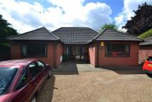 Detached property for sale in Stanford Road, Orsett...