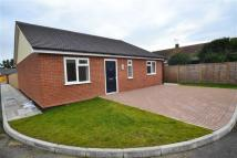 Lampits Hill Detached Bungalow for sale