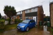 semi detached home to rent in Halt Drive, Linford...