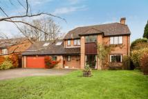 5 bedroom Detached home for sale in Dorchester Hill...