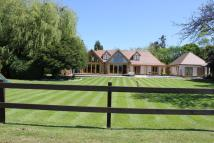 house for sale in Muscliffe Lane...