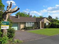 Bungalow for sale in Millfield, Beaminster...