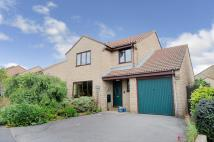 5 bedroom Detached property in The Beeches, Beaminster...