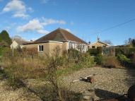 3 bed Bungalow in Higher Green, Beaminster...