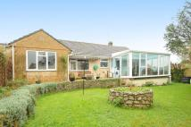 Bungalow for sale in Hurst, Beaminster...