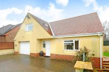 Detached house for sale in Stoke Road, Beaminster...
