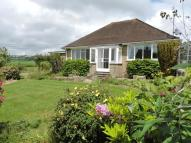 Bungalow in Higher Green, Beaminster...