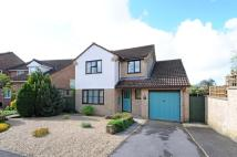 4 bed Detached property in The Beeches, Beaminster...