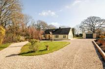 Detached home for sale in Hollymoor Lane...
