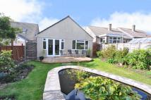 Bungalow for sale in Bull Lane, Maiden Newton...