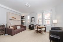 Studio apartment to rent in Ambrosden Avenue, SW1P