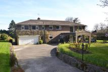 Detached house for sale in Springfield Lane...