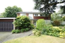 5 bedroom Detached home to rent in Cedar Copse, Bromley, BR1