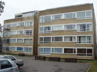 Flat to rent in RECTORY ROAD, Beckenham...