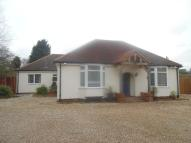 Detached Bungalow in Barford Road, St. Neots...