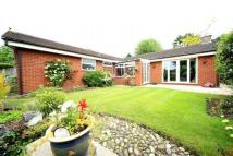 4 bed Detached Bungalow for sale in Yew Tree Drive...