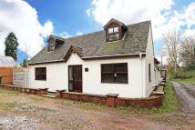 Detached Bungalow to rent in Off Lincoln Road...