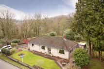Bungalow for sale in Calcutts Road, Jackfield