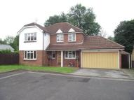 Wyldwood Close house to rent