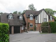 Detached property for sale in Smallridge, Newbury, RG20