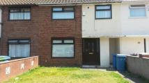 Haven road Terraced house to rent