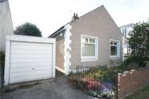 Detached Bungalow in Chichester Road...