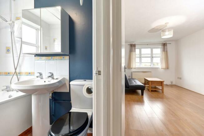 Bathroom & living ro