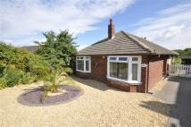 3 bed Detached Bungalow for sale in The Wheatridge East...