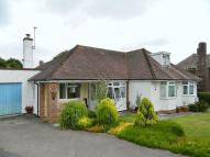 Detached Bungalow for sale in Touchstone Close, Chard