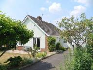 Detached Bungalow for sale in Abbey Close, Axminster