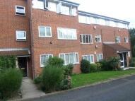 Celadine Court Flat to rent