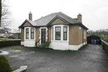 Detached Bungalow for sale in 37 Stirling Road...