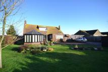 Detached Bungalow in Dorchester, DT1