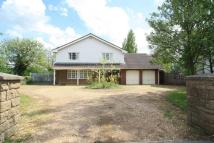 5 bed Detached home in Eyebury Road, Eye...